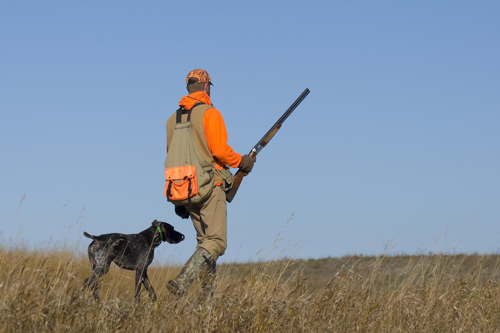 bigstock-Pheasant-Hunter-42093388